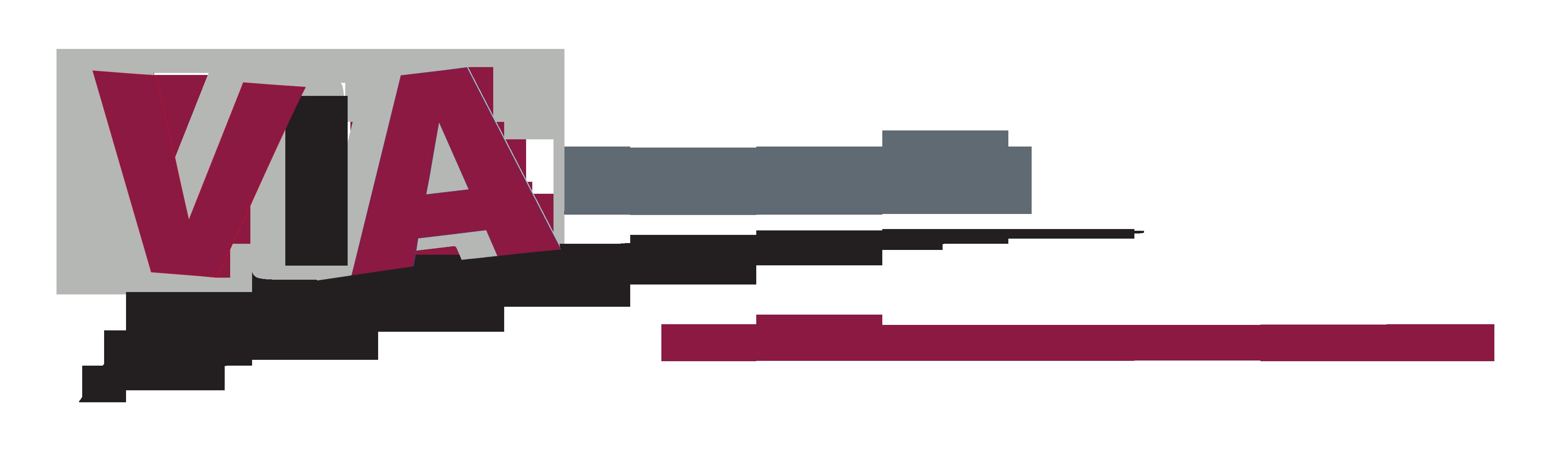 Logo Agence Web Viamultimedia
